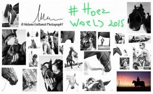 HorsesBestShots2015_MgpY